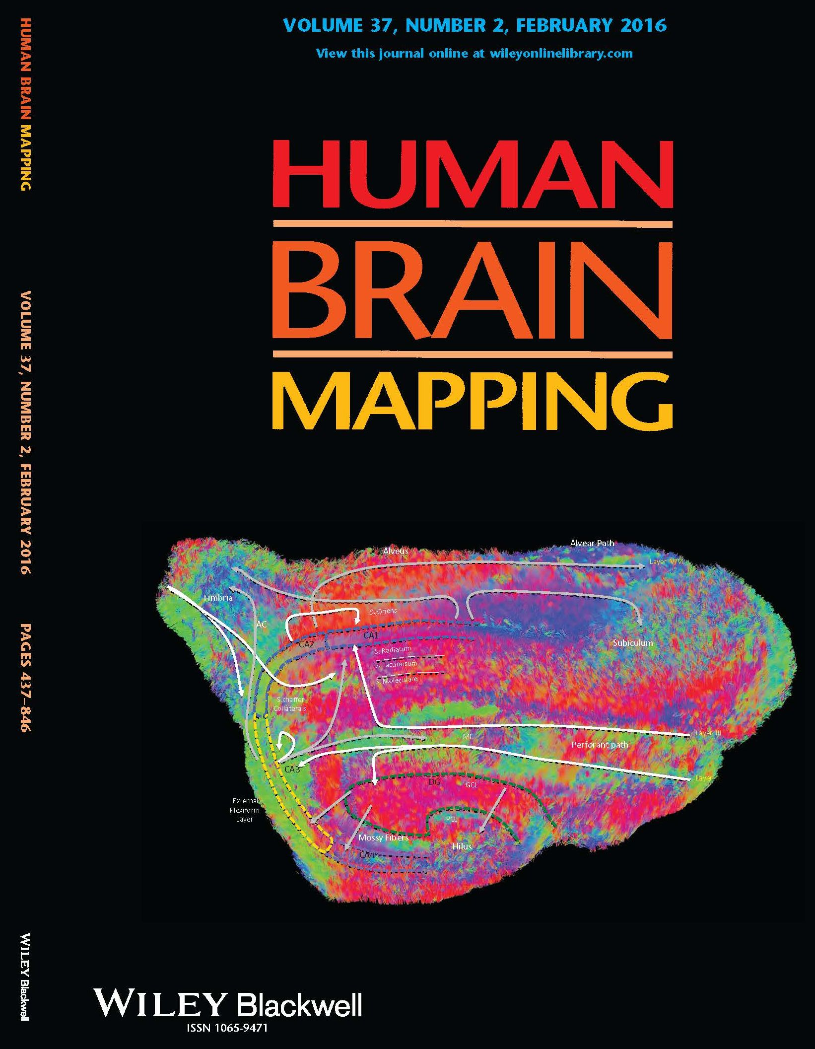 Human Brain Mapping Dr. Modo's Image on Human Brain Mapping Journal | Department of  Human Brain Mapping